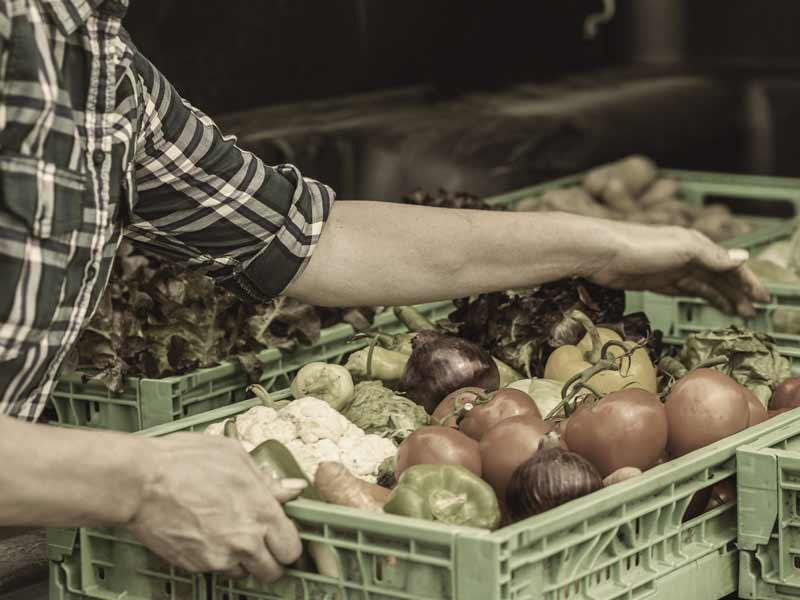 Garantir l'approvisionement alimentaire